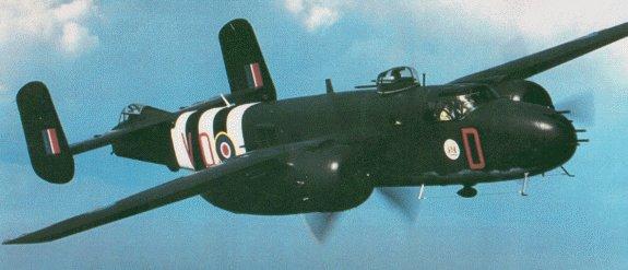 Avions de la seconde guerre mondiale - Page 2 B25_310