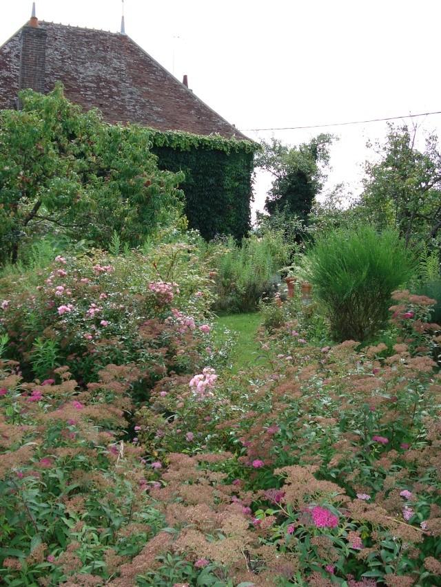 le jardin de Giroflee - Page 4 188_0215