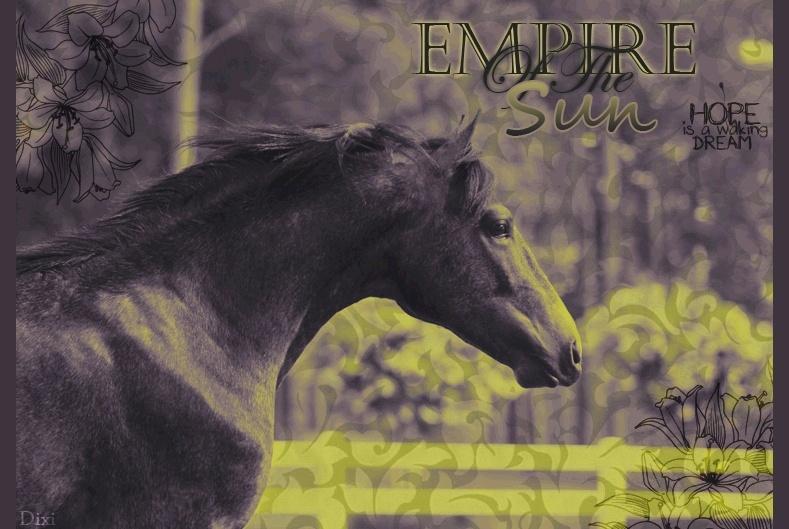 Dixi Dons :P Empire10