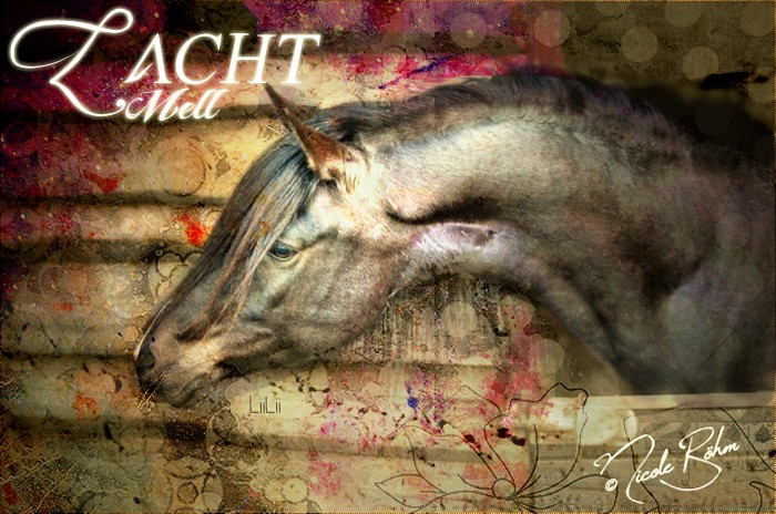Zacht Mell Mell1010