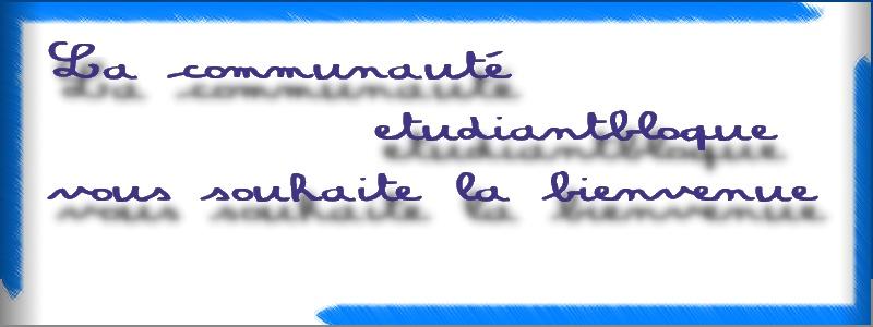 Pour les conjugaisons!(parfait pour votre admin NULMAN :D ) Logo_b10