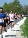 [Semi marathon du lac d'Annecy-2011]Balou P1010011