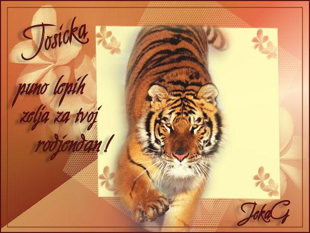 Tosicka :) Tosick10