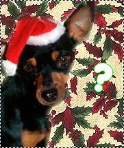 Théme spécial Noël pour Z'aniWeb [admin] Ki_est10