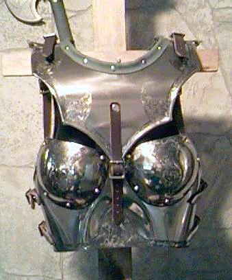 Banque l'images Fan1110