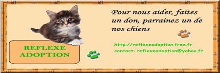 Adhérer à Reflexe et aidez nous à sauver des animaux Signat10