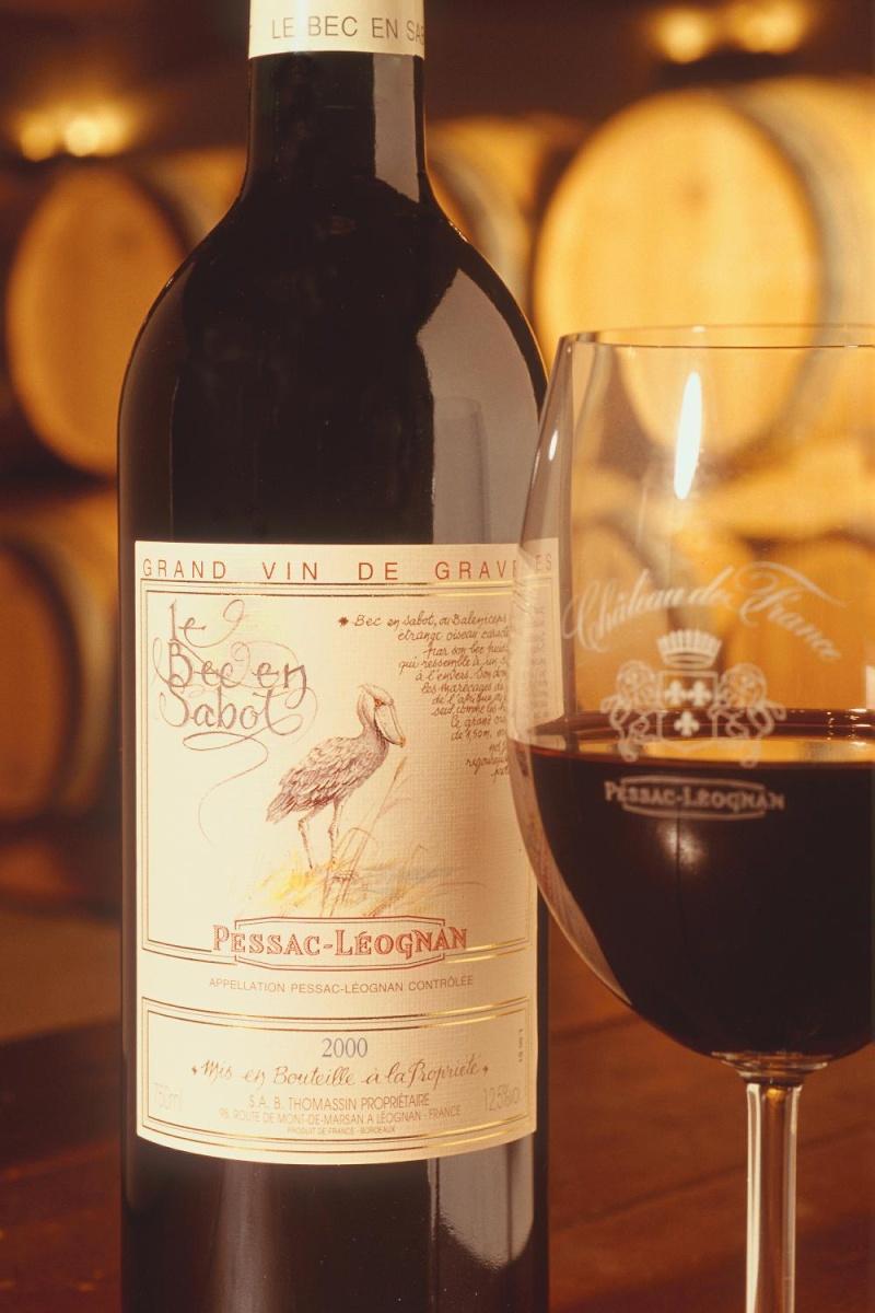 Le vignoble du Pessac Leognan Etique12