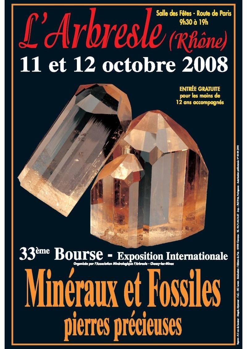 2008- Bourse aux Minéraux et Fossiles, pierres précieuses de l'Arbresle   Affich10