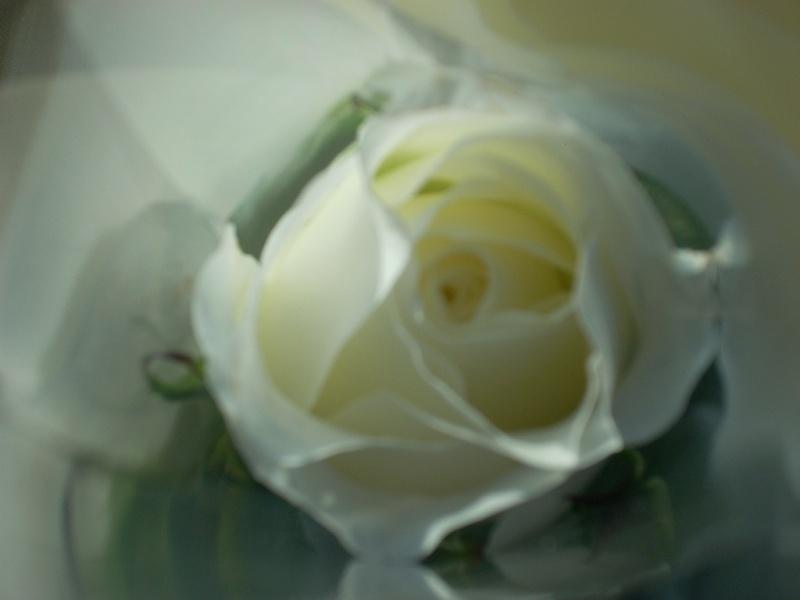 Tu me manque tellement... Photo_21