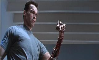 Terminator (Trilogie) Termin29