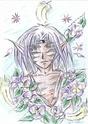 Le coin de Paradis d'Hitoki :D Tigre_10