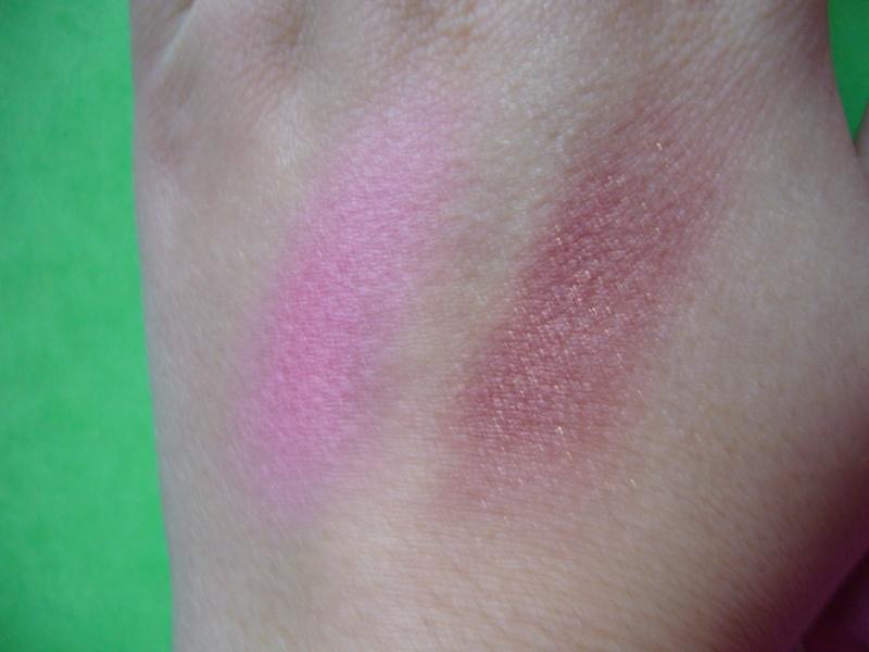 blush poudre P1010621