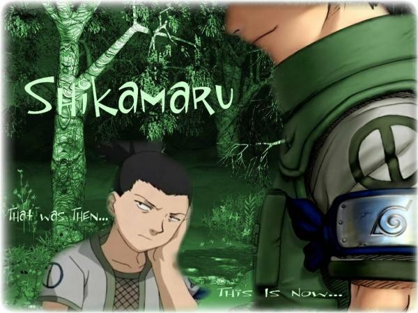 Naruto Shikam10