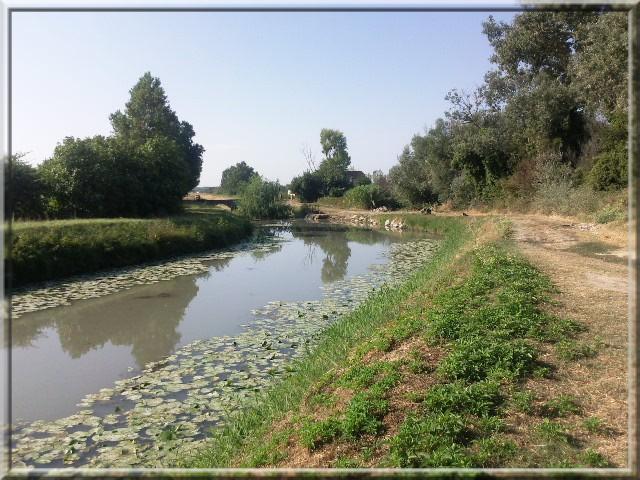 sortie Arles Bc1410