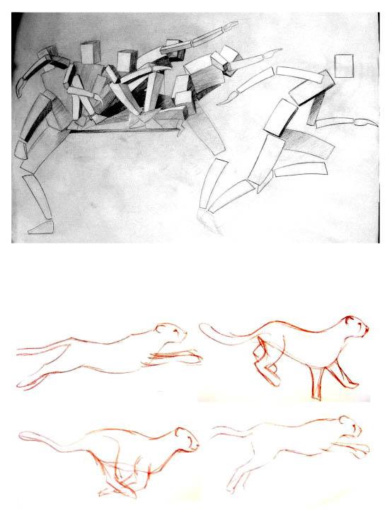 رسم الحركة 1210