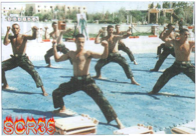 موسوعة الصور الرائعة للقوات الخاصة الجزائرية Swscan15