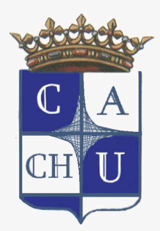 Club Atlético Chipos Unidos y nuestra odisea por el Winni... Escudo10