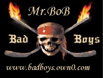Mr.BoB