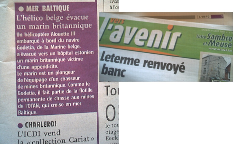 A960 Godetia : les news - Page 2 A960go10