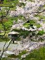 Paysages Japonais Img_1110