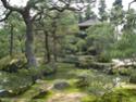 Paysages Japonais Img_1611