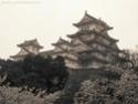 Paysages Japonais Img_2210
