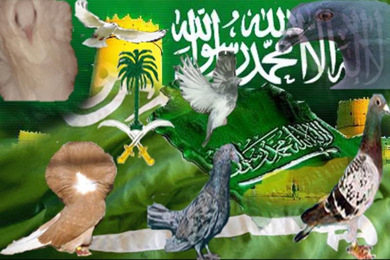 منتديات حمام السعودية