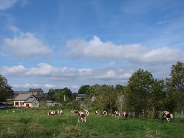 Le temps à Madelonnet du mois d'octobre 2007 119