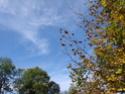 Le temps à Madelonnet du mois d'octobre 2007 2007_157