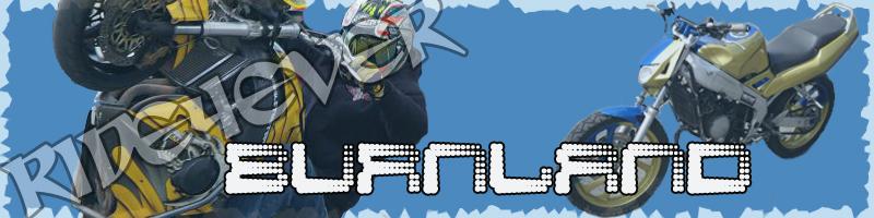 Logo pour le forum Burnla10