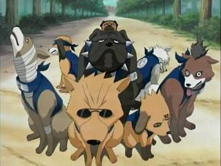 Invocaciones de perros ninjas Mediav10