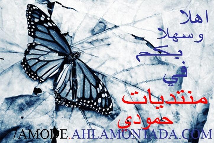 www.7amode2507.com