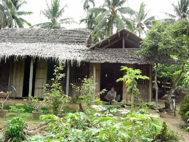 le Viêt Nam 1210