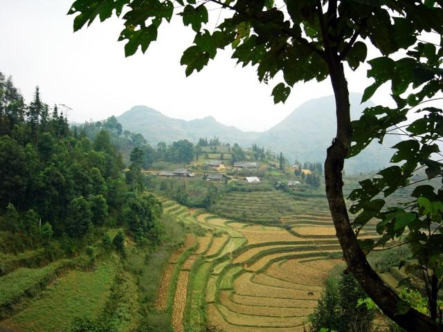 le Viêt Nam 13_sa_10