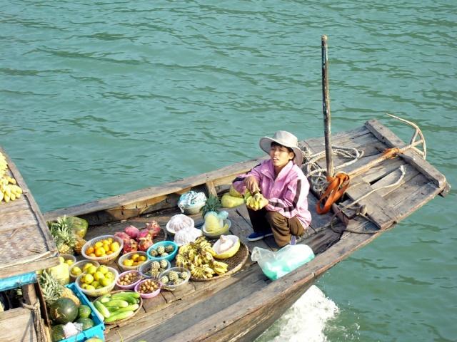 le Viêt Nam 32_bai10