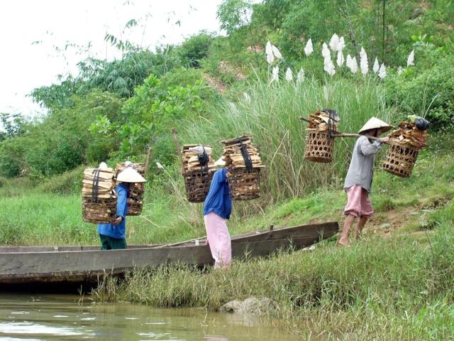 le Viêt Nam 36_hue10
