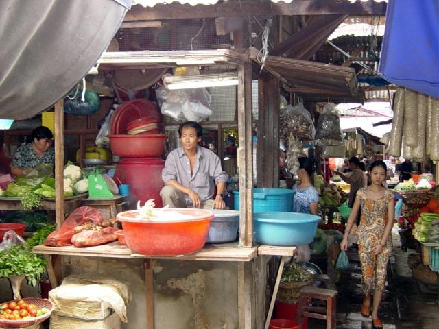 le Viêt Nam 44_sai10