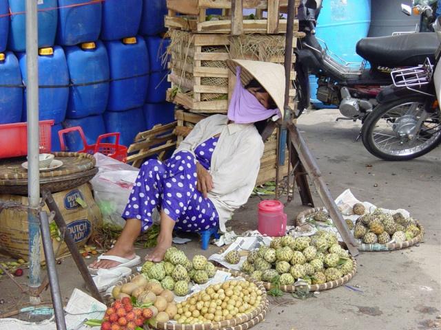 le Viêt Nam 50_nha10