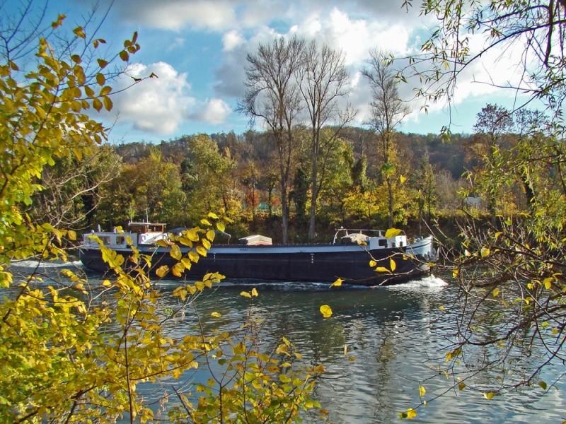 Promenades sur les berges de la Seine Croiss10