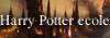 Harry Potter Ecole Bouton23