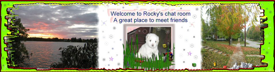 Rocky the dog Small11