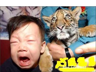 صور يهال....اضحك ههههههههه Getatt41