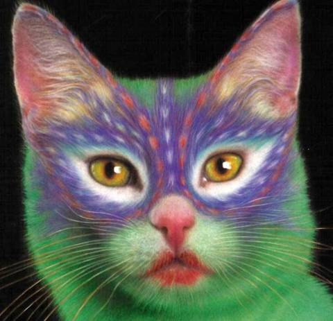 Painted Cats lol Image019