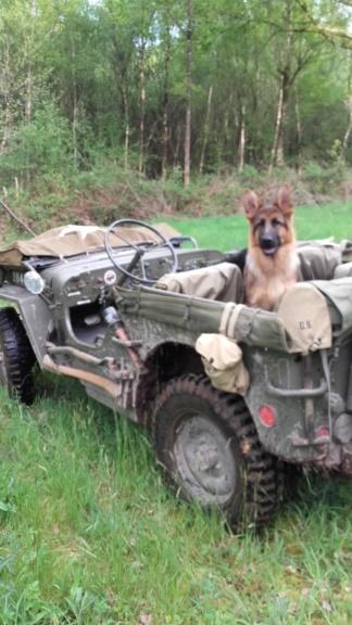 Forum véhicule militaire ww2 morbihan  20190421