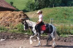 KIERAN et SUNSHINE, en Suisse Sunshi10