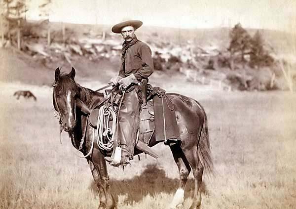le cow boy.............. Cowboy10