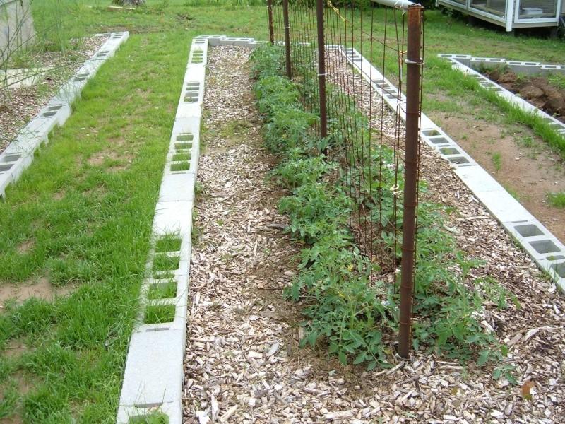 Garden 2011 17310
