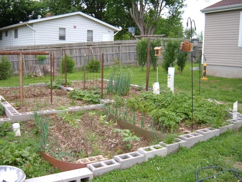 Garden 2011 18511