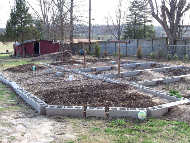 Garden 2011 21737710
