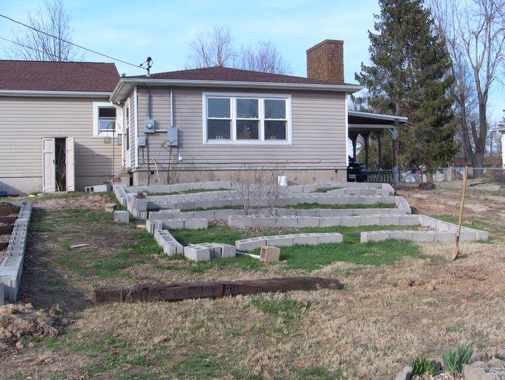 Garden 2011 21737712